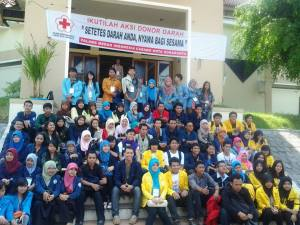 Donor Darah Imbasadi 2013